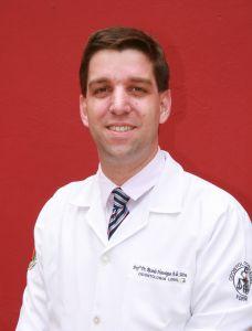 Prof. Dr. Ricardo Henrique Alves da Silva