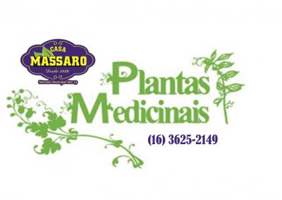 Maracujá Folha (Passiflora sp) 50g