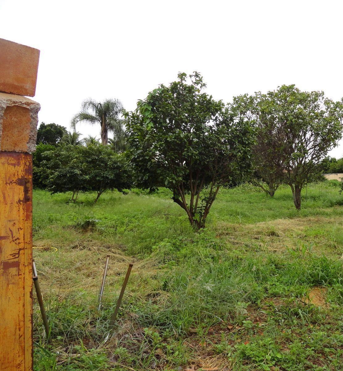 283 - Terreno Cond. Vista Alegre 1428 m²
